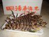 天然活き車海老(1kg/10000円)